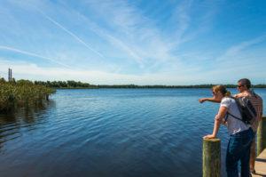 Sutton Lake, cape fear, north carolina, coal ash