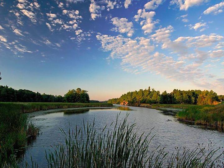Clean Water Act Wetland WOTUS