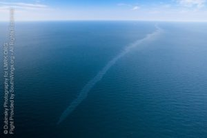 taylor energy, offshore, offshore drilling, oil spill