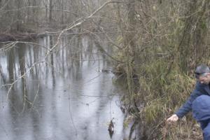 black river, pure farms pure waters, north carolina