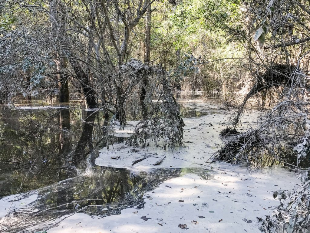 duke energy coal ash spill hf lee neuse river hurricane matthew