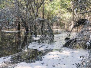 duke energy coal ash spill hf lee neuse river hurricane matthew