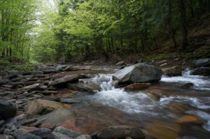 clean water act stream