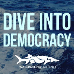 Dive Into Democracy citizen suits Waterkeeper Alliance congressional recess