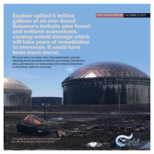 Save the Bays Oil Pollution report