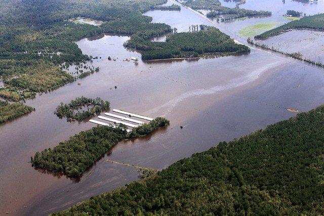 Florence CAFO Flooding