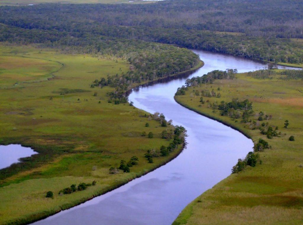 Isaac Lang-Apalachicola River Delta
