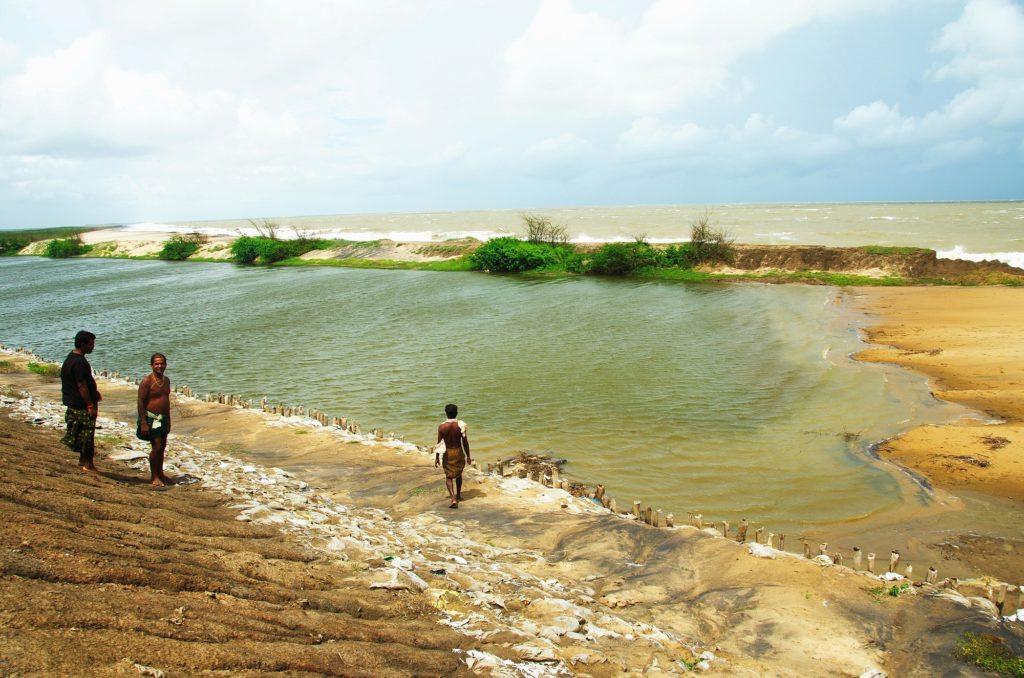 Mahanadi River Waterkeeper Rising Sea - Bay of Bengal - 3_ Ranjan