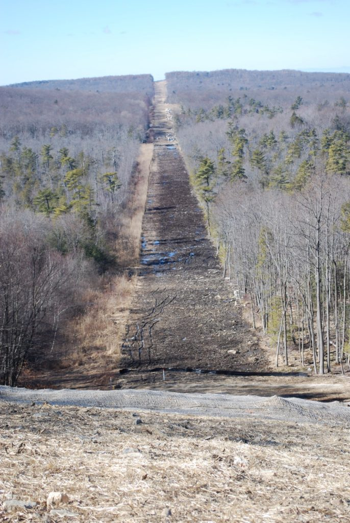 The process of building pipelines can be devastating to forest lands, as in the photo above.