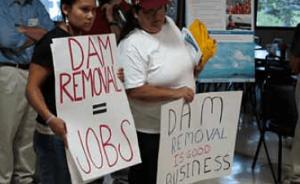 dam-removal advocates