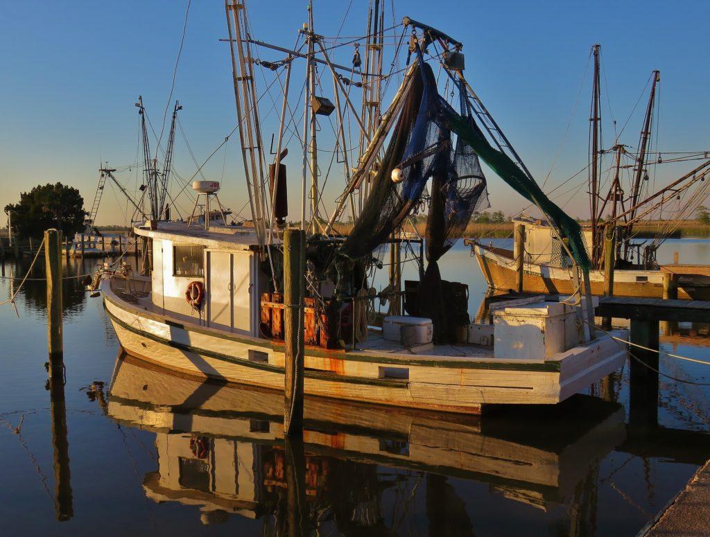 Shannon Lease Apalachicola River Scipio Shrimper