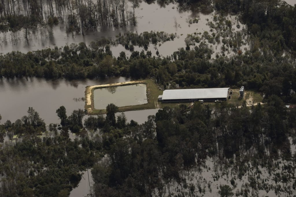 North Carolina CAFOs and their toxic waste mix with the floodwaters of Hurricane Matthew.